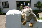 Schubert, the Festival mascot